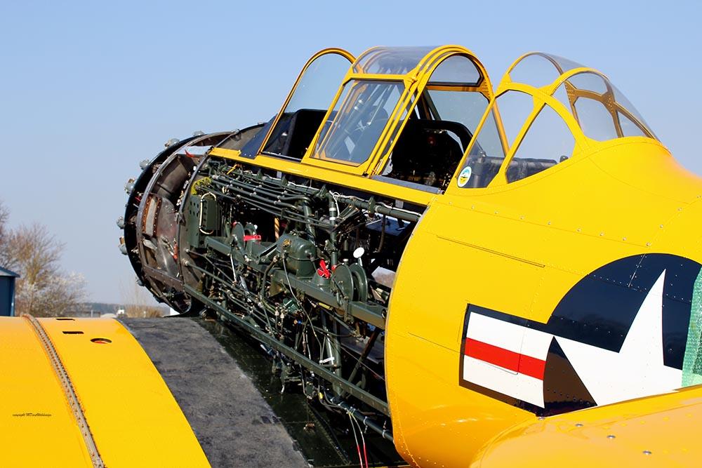 AT-6_D-FXXX_2012-03-234.jpg