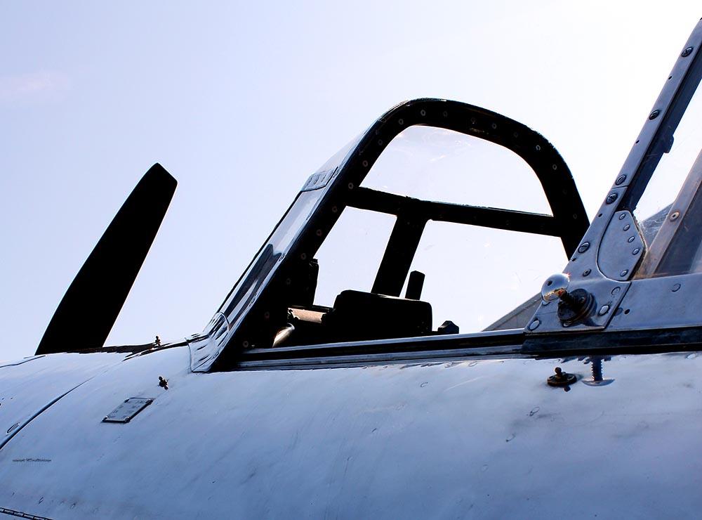 Yak-11_D-FMAX_2011-07-2910.jpg