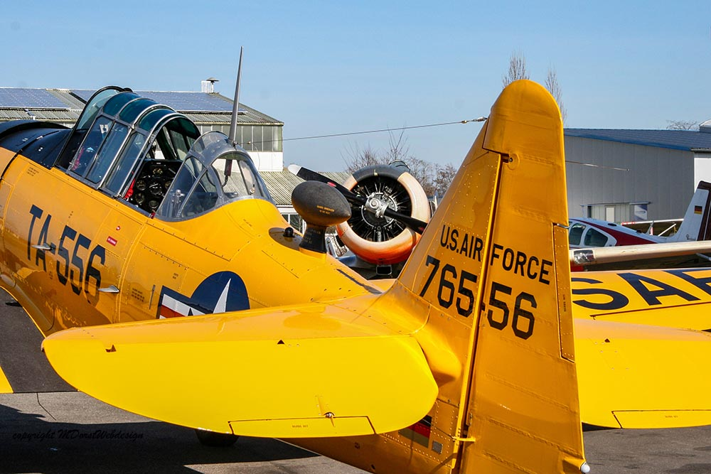NAA_AT-6_D-FITE_2010-03-19_-49.jpg