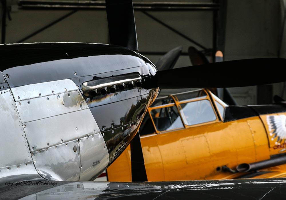 P-51_FlyingDutchman_2015-11-025lr.jpg