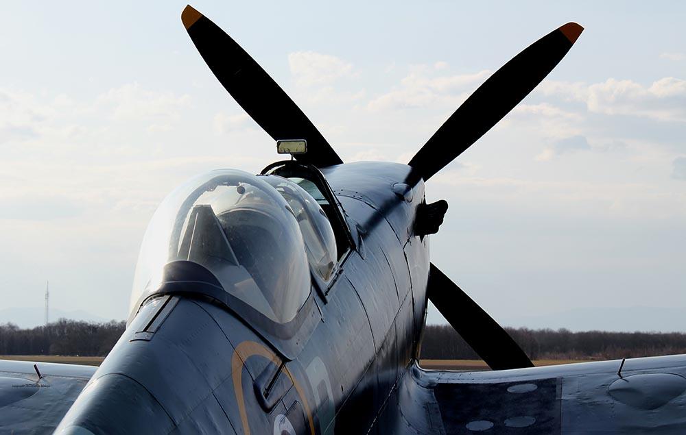 Spitfire_T9_D-FMKN_2012-03-178.jpg