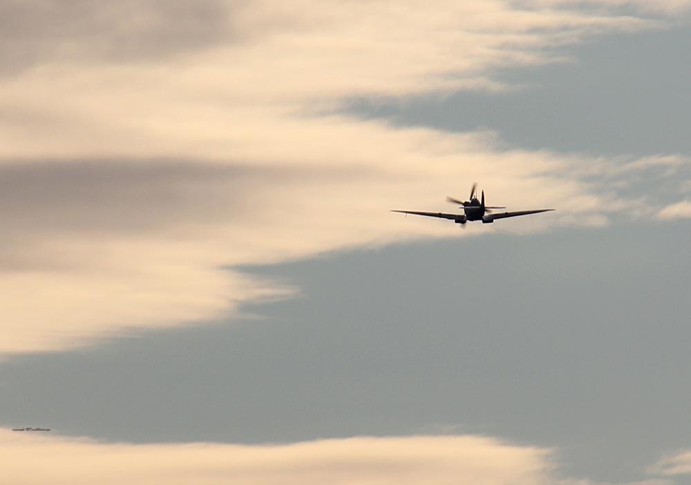 Spitfire_MkXVI_TE184_2012-02-2426.jpg