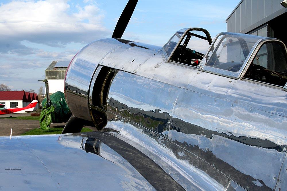 Yak-11_D-FMAX_2010-03-29_-3.jpg